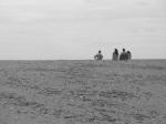 A la sortie d'une dune, à la Roche percée
